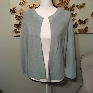 Ann Taylor LOFT light blue cardigan sweater